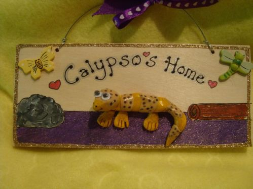 3d Leopard Gecko Personalised VIVARIUM TERRARIUM Children's Bedroom Reptile Lizard Sign Handmade plaque